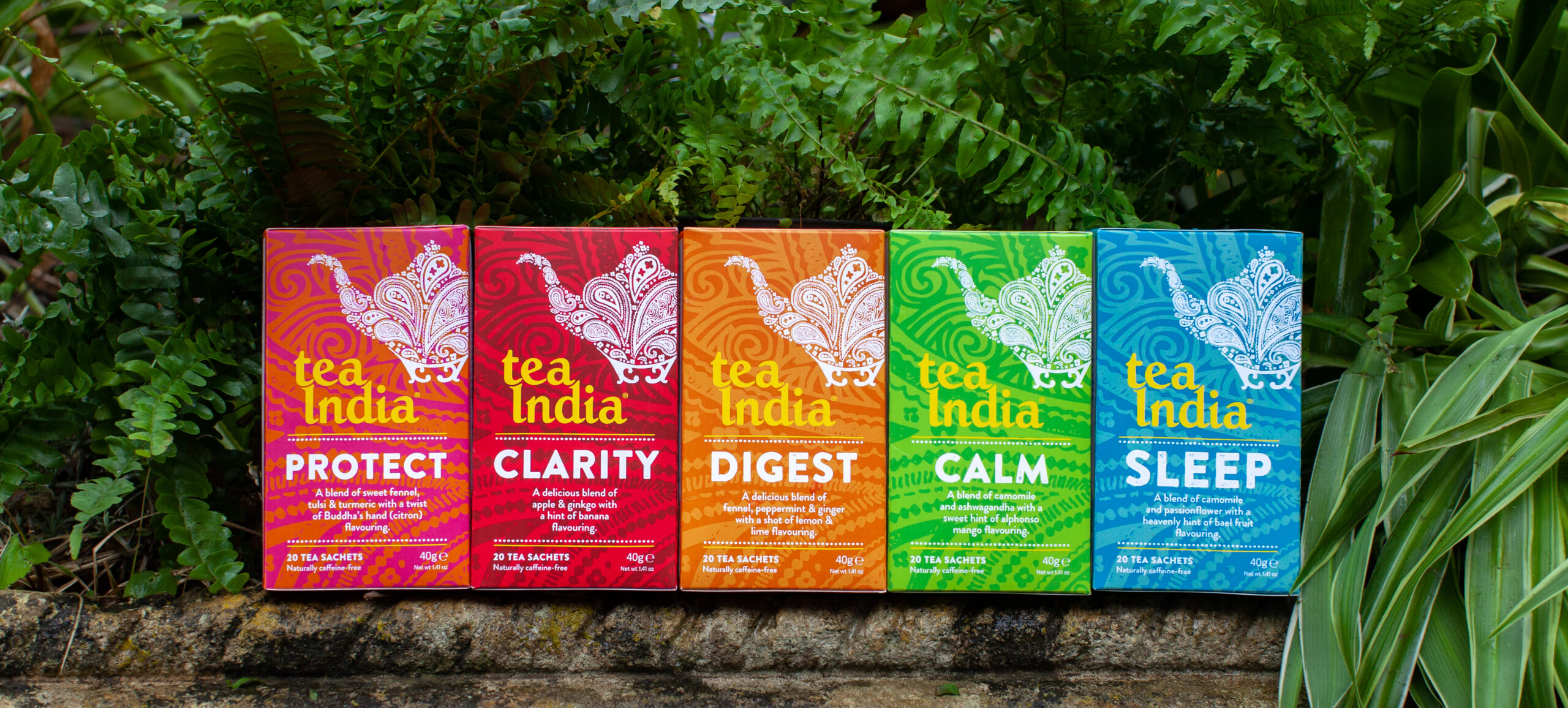 Tea India New Wellness Collection of Herbal Teas